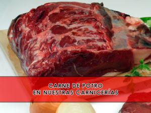 comprar carne de potro