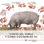 Cortes del cerdo