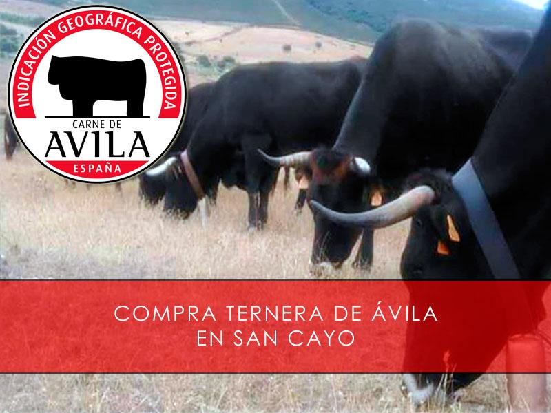 Compra ternera de Ávila en Sancayo