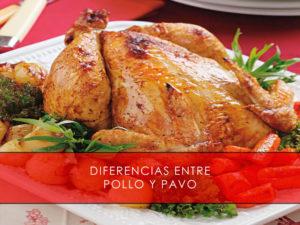diferencias entre pollo y pavo